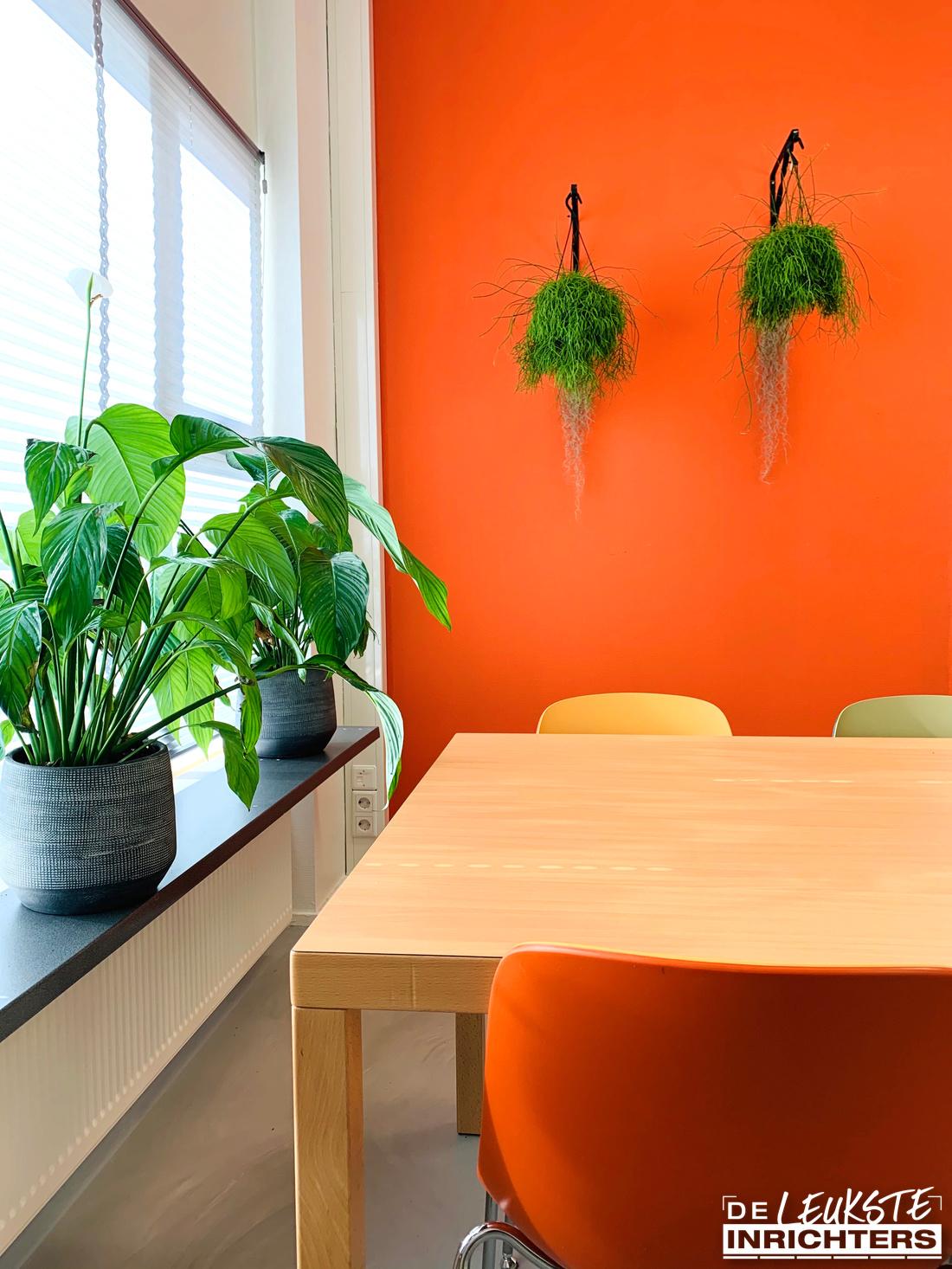 Ontwerp personeelskamer en vergaderruimte inrichting De Musketier planten
